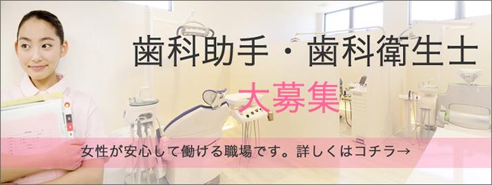 歯科衛生士・歯科助手・求人募集。女性が安心して働ける職場です。詳しくはお電話ください。